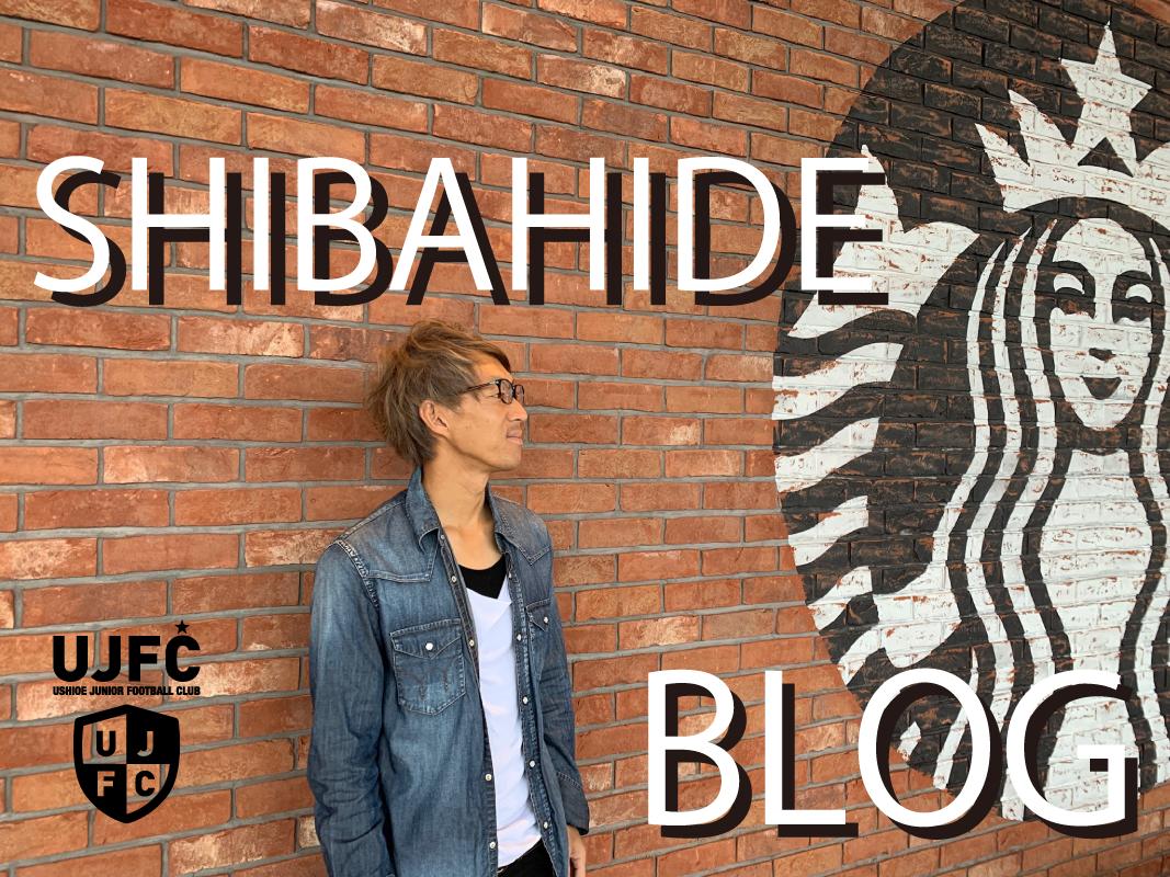 しばひで blog
